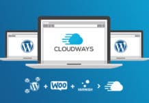 How Install Wordpress Step by step in Cloudways Hindi Tutorial