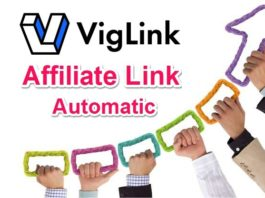 Automatic Affiliate Link se Website par Paise kamaye Viglink
