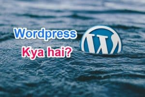 What is Wordpress in Hindi | Full Information - tegory%