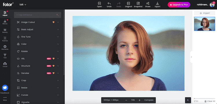 Fotor Photo Editor Review in Hindi - Website